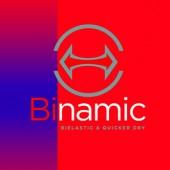 Binamic